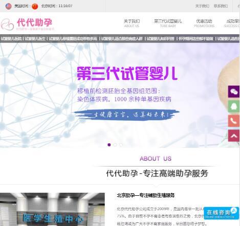 北京试管婴儿助孕公司首页预览